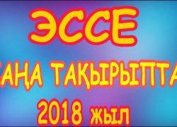 Қазақ тілі және әдебиетінен эссе тақырыптары – 2018